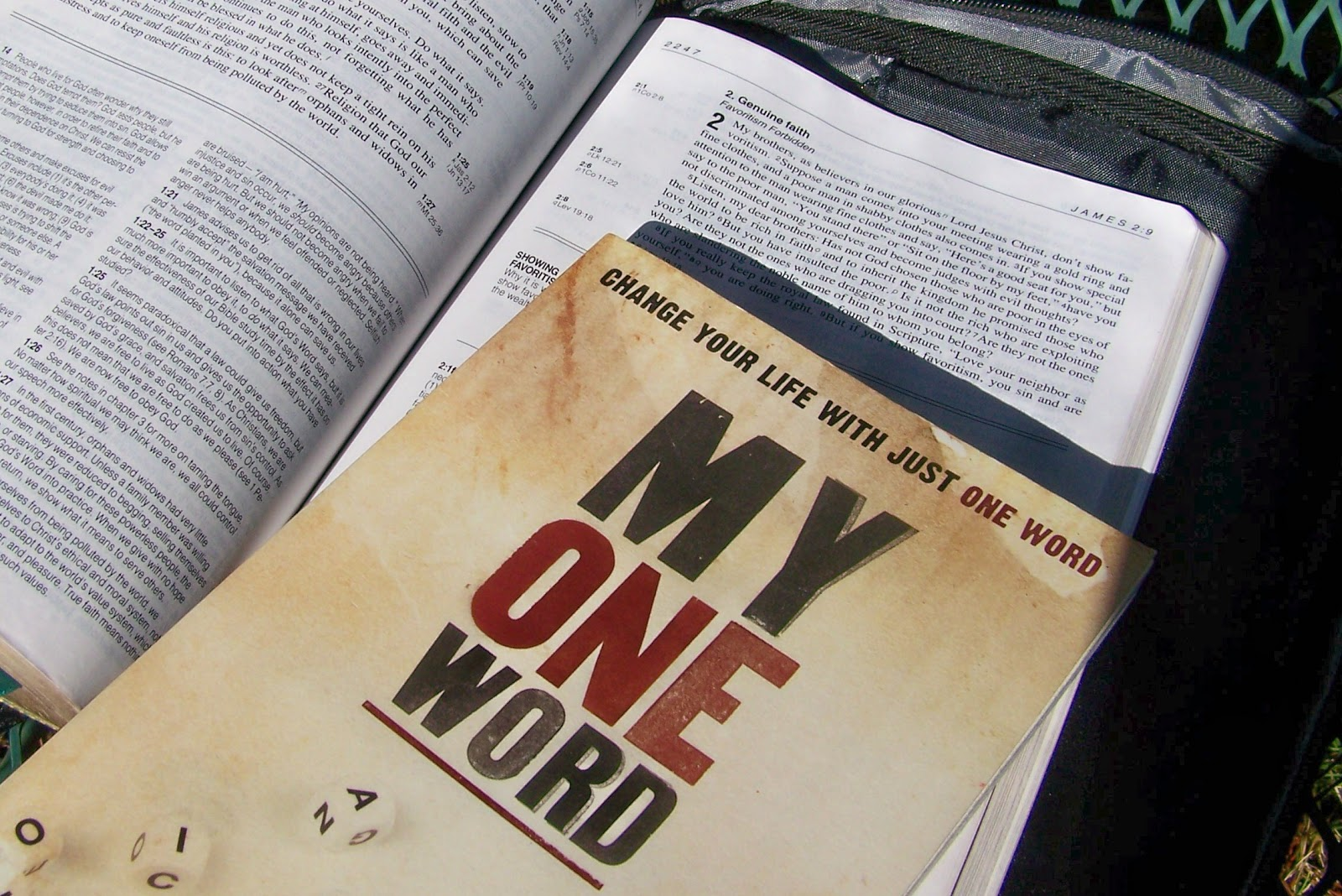 my one word book with bible